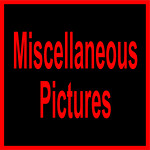 A WWLS MISC-10001 (1)