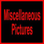 A 4O4 MISC-10002
