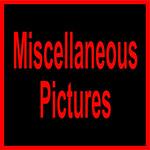 A GOB14 MISC-11000 (2)