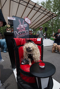 WEAVER_Pet_Parade_2014-04-19_12-04-10__8002274