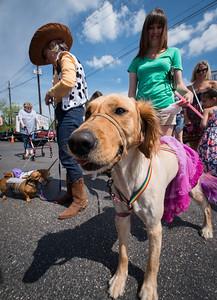 WEAVER_Pet_Parade_2014-04-19_10-21-45__8001723