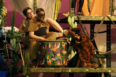 "EDSS Play - ""The Jungle Book"" - 2014"