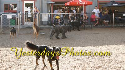 YesterdaysPhotos com_DSC1297