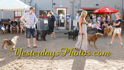 YesterdaysPhotos com_DSC1571