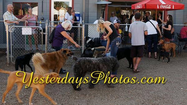 YesterdaysPhotos com_DSC1692