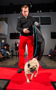 Fashion for Pawz