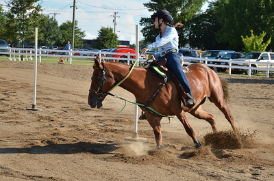 2014~4-H-Fair~Horse & Pony Contesting Event