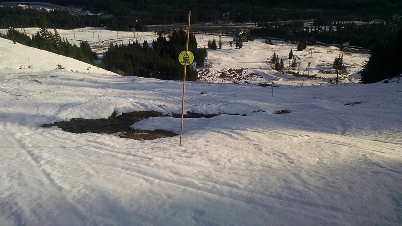 Thin Cover. But one example of the unusually shallow snow pack for the 2014-15 season.