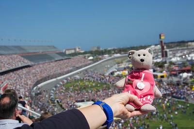The Bear at Daytona