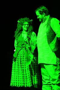 GB1_4483 20150429 195912 Shrek the Musical