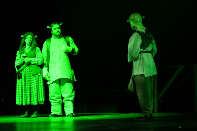GB1_4548 20150429 200502 Shrek the Musical
