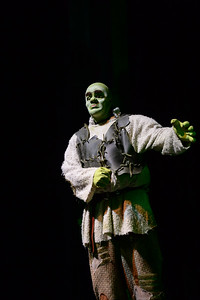 GB1_4493 20150429 200006 Shrek the Musical