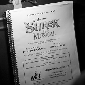 GB1_4434 20150429 195347 Shrek the Musical