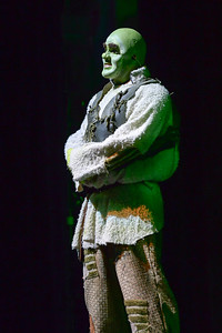GB1_4488 20150429 195954 Shrek the Musical