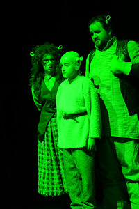 GB1_4503 20150429 200030 Shrek the Musical
