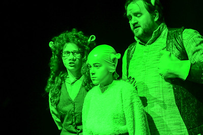 GB1_4501 20150429 200030 Shrek the Musical