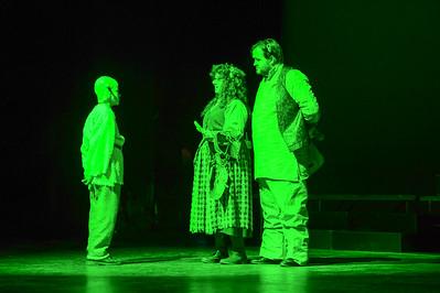 GB1_4496 20150429 200016 Shrek the Musical