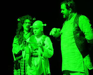 GB1_4541 20150429 200424 Shrek the Musical