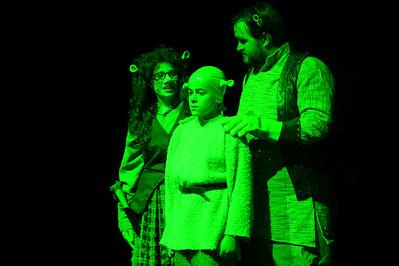 GB1_4508 20150429 200044 Shrek the Musical