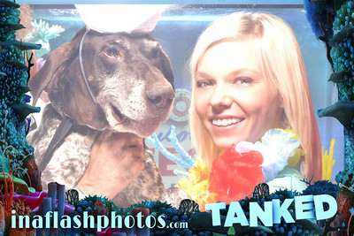 Tanked on Animal Planet Network teams up with In A Flash Photos to bring you another world's first. The debut of the Tanked & In A Flash Aquarium Photo Booth filmed live at First Friday, Downtown Las Vegas!
