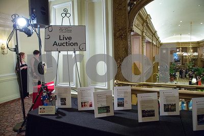 20150516_Village-Auction_010_9255