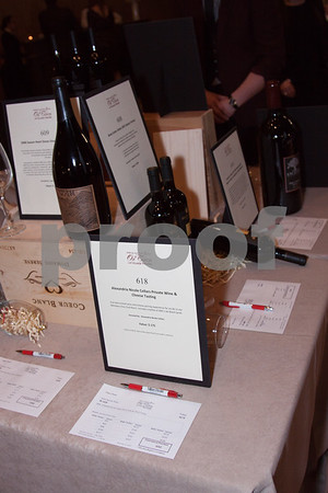 20150516_Village-Auction_023_0026