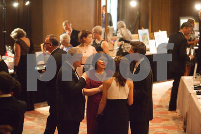 20150516_Village-Auction_400_6846