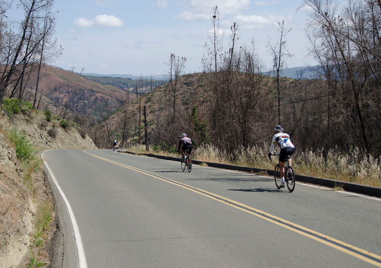 Descending Honey Hill (the Butts Canyon fire damage has not healed)