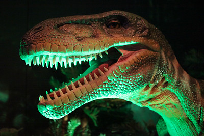 Dinosaur Discovery: Lost Creatures of the Cretaceous, Queensland Museum