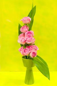 20150826 Flower Show-2205