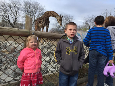2015 PGH Zoo
