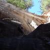 Englestead Hollow, Zion National Park Utah
