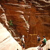 Behunin Canyon, Zion National Park Utah