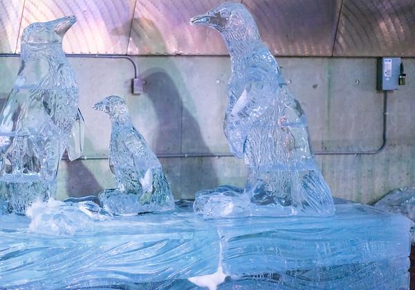 Penguins ice sculpture at the New England Aqarium