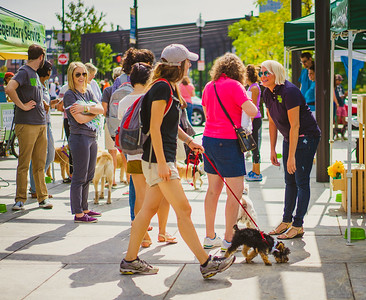 Dog Carnival on the Greenway