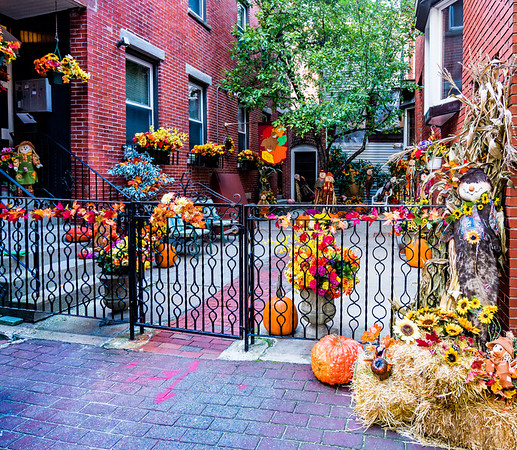 2015-10   Fall Display at Webster Place