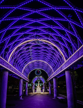 looking up at the blue lights on christopher columbus park trellis lighting g