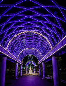 Looking up at the blue lights on the Christopher Columbus Park trellis