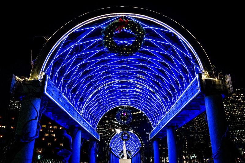 Under the blue lights at the Christopher Columbus Park trellis
