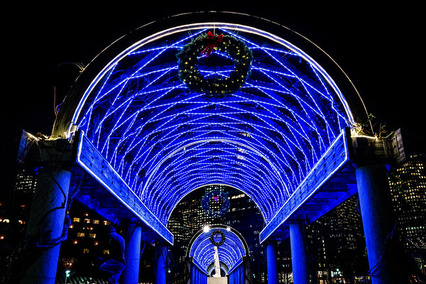 Under the blue lights at the Christopher Columbus Park trellis