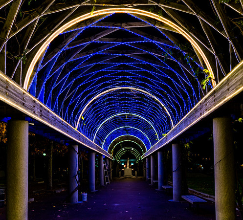 Traditional-looking blue trellis lights, similar to previous years
