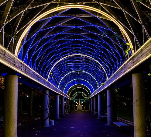 2015-11   Trellis Light Testing at Christopher Columbus Park