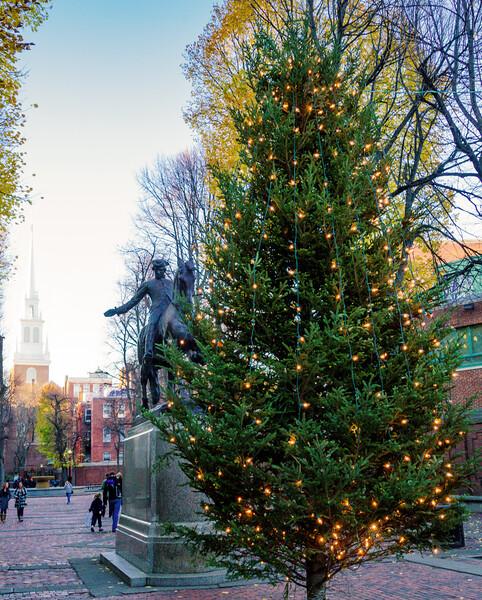 Prado Christmas tree lighting
