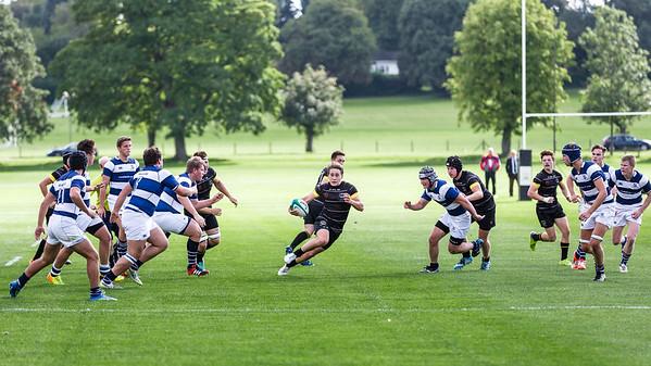 Merchant Taylors' School Rugby