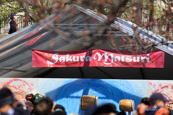 Sakura Matsuri BBG - 2015