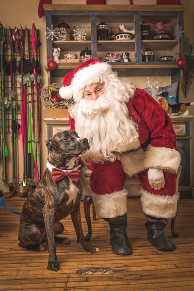 Wag Santa Photos