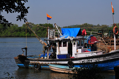 Velha Goa