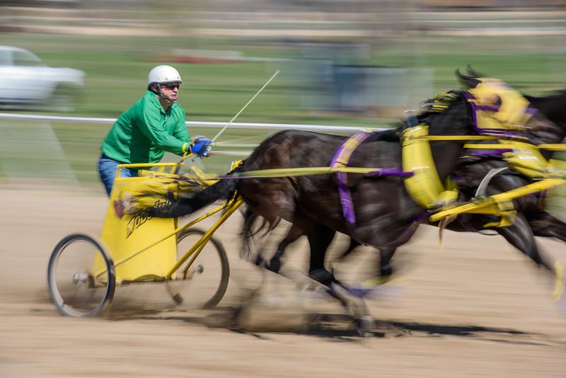 20150321 Ogden Chariot Racing 072
