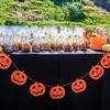 Brookfield Pumpkin Party_20151024_018