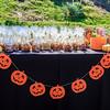 Brookfield Pumpkin Party_20151024_018
